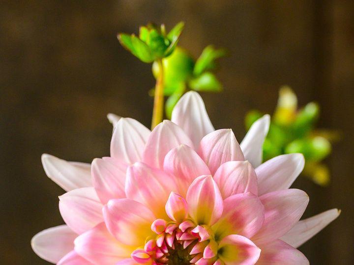 Tmx Erf 135 2 51 1899057 157499170759378 Gardiner, ME wedding florist
