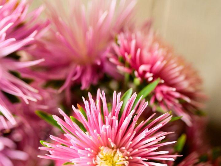 Tmx Erf 169 51 1899057 157499174422498 Gardiner, ME wedding florist