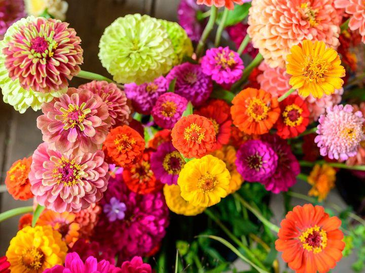 Tmx Erf 172 51 1899057 157499174830384 Gardiner, ME wedding florist