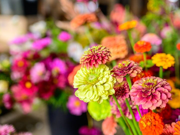 Tmx Erf 173 51 1899057 157499174277747 Gardiner, ME wedding florist