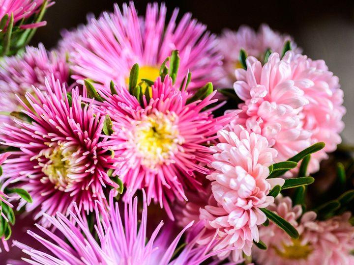 Tmx Erf 96 2 51 1899057 157499170936816 Gardiner, ME wedding florist