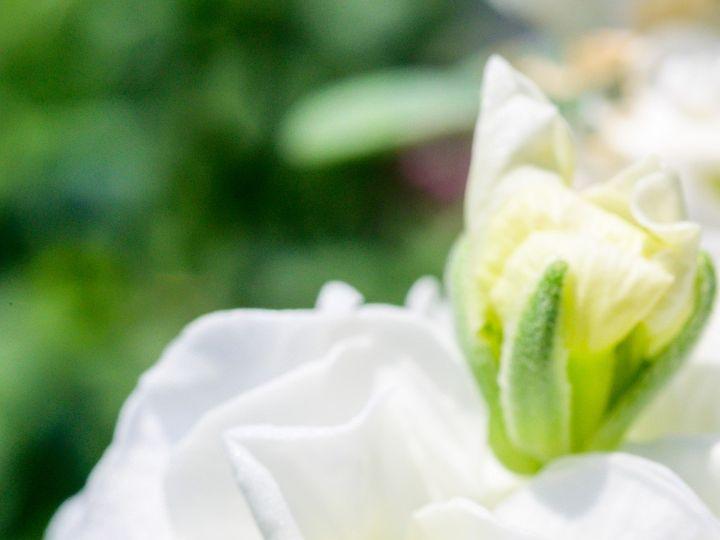 Tmx Flower Bloom 36 51 1899057 157499173596393 Gardiner, ME wedding florist