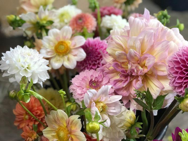 Tmx Img 0644 51 1899057 157499172282895 Gardiner, ME wedding florist