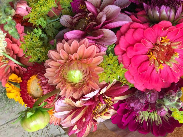 Tmx Img 0721 51 1899057 157499172246285 Gardiner, ME wedding florist