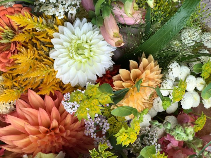 Tmx Img 0722 51 1899057 157499172199065 Gardiner, ME wedding florist