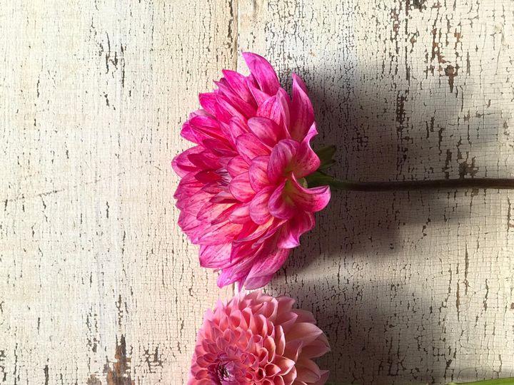 Tmx Img 1131 51 1899057 157499171511506 Gardiner, ME wedding florist