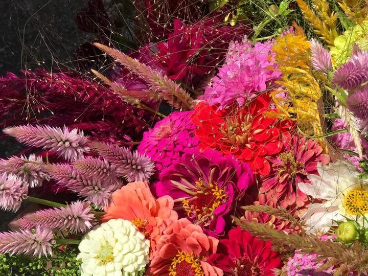 Tmx Img 1540 51 1899057 157499170537266 Gardiner, ME wedding florist