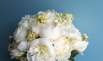The Flower Petaler