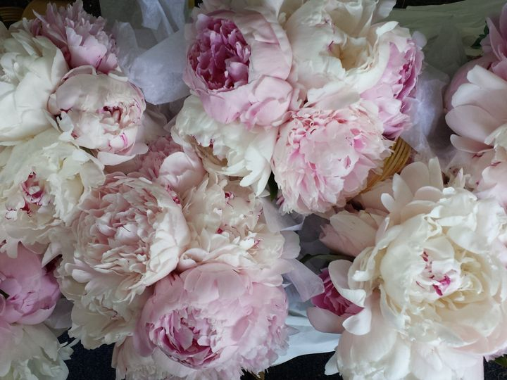 Tmx 1422837751523 20140531115546 Huntington, NY wedding florist