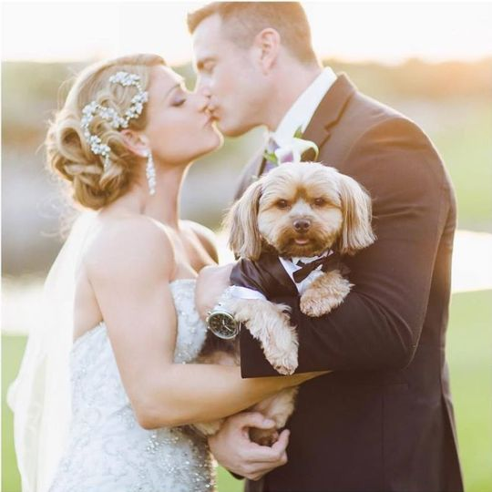 Newlyweds and their dog