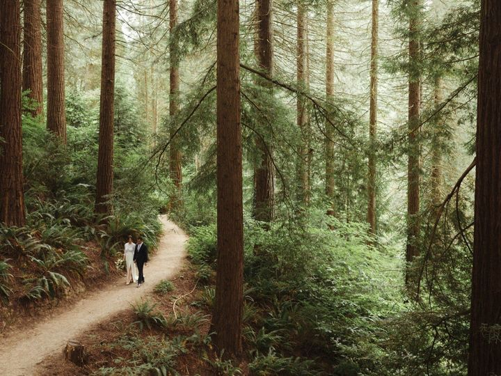 Tmx Epic Scenery With Redwood Trees And Couple Walking Down Path 51 415157 157912713125241 Portland, OR wedding photography