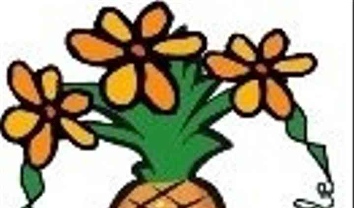 Flowering Pineapple LLC
