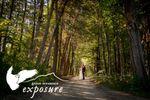 Green Mountain Exposure image