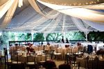 Affordable & Luxury Event Rentals image