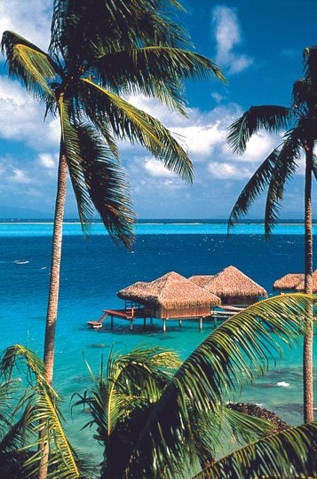 The islands of Tahiti make the perfect honeymoon destination!