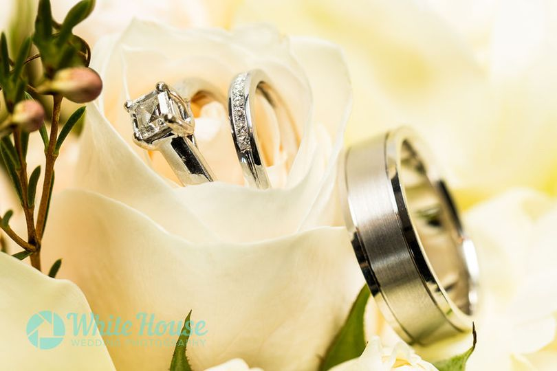 Detail shot of wedding rings and band in white rose