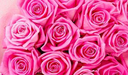 Blushing Blooms Floral Design