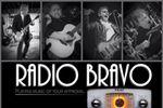 Radio Bravo image