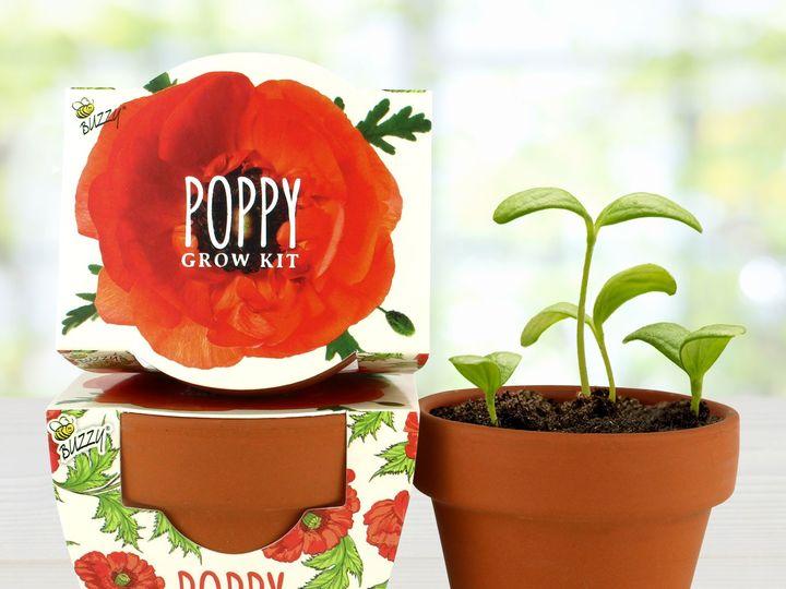 Tmx 80881 Mgp Daydream Poppy Image3 51 1474357 1566230071 Pottsville, PA wedding favor
