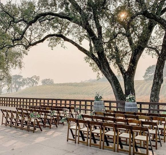 Wedding Ceremony  beside olive trees