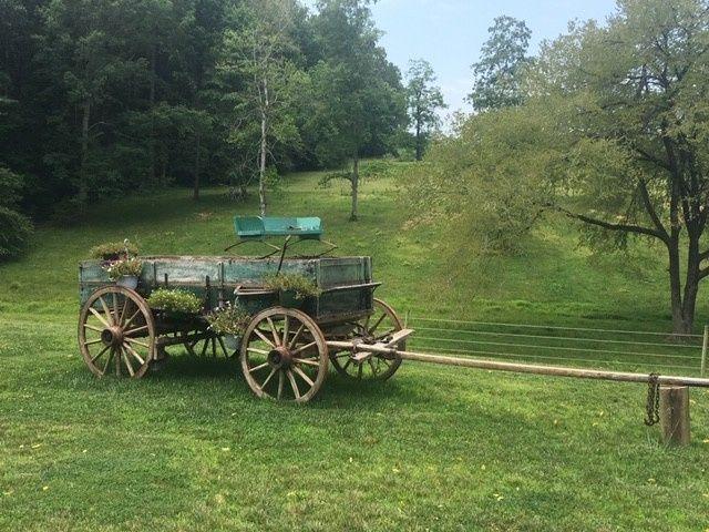 Tmx Tractor At Wedding Venue 51 1962457 159037377366260 Greensboro, NC wedding planner