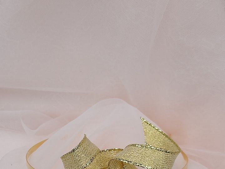 Tmx 2 51 1972457 159225606660865 Gahanna, OH wedding florist
