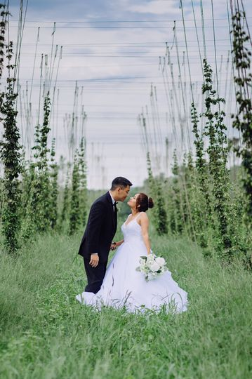 Love in the hops field