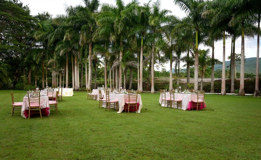 A reception on the lawn