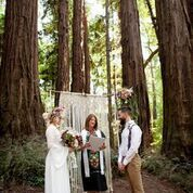 Married in nature's redwood cathedral!