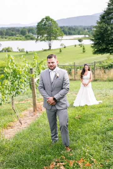 First look in the vineyard