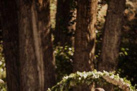 KRISanthemums