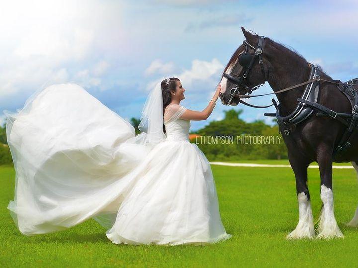 Tmx 1445009180089 Lily2 Palm City wedding transportation