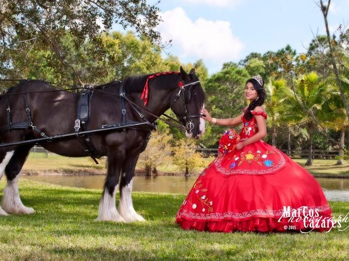 Tmx 1448303290573 Karina 2 Palm City wedding transportation