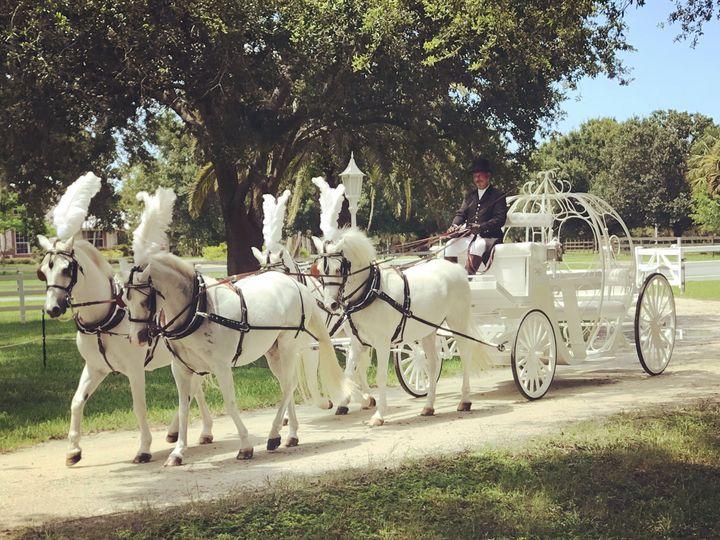 Tmx Img 8486 51 652657 Palm City wedding transportation