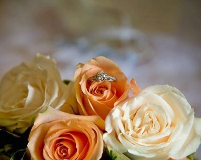 Tmx 1256271468415 104 Bridgeport, CT wedding planner