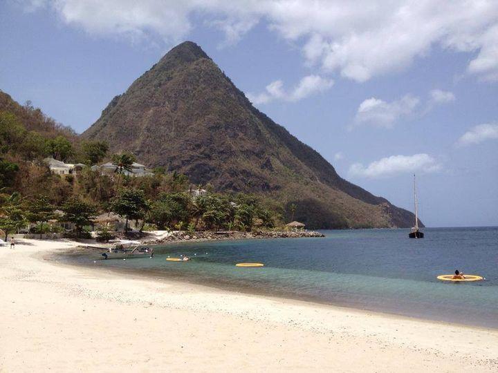 Elite Travel Palm Harbor Fl Reviews