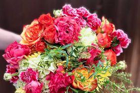 Trophy Blooms