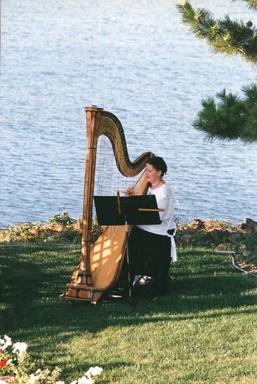 Add the sound of elegance with the Mystic Harpist