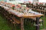 Copper Feather Events image