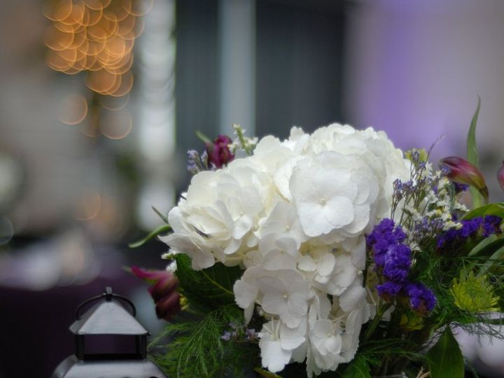 Tmx 1340986985202 81066970022 Land O Lakes, FL wedding planner