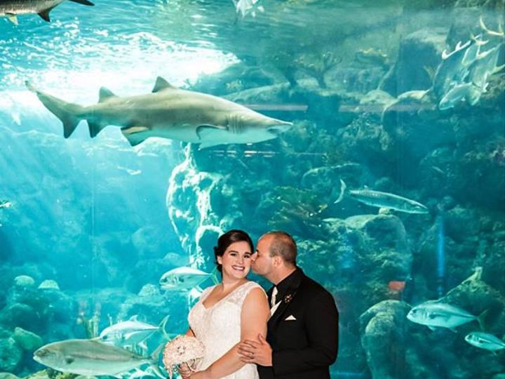Tmx 19990194 1852863308063817 1971043019201888558 N 51 516757 Land O Lakes, FL wedding planner