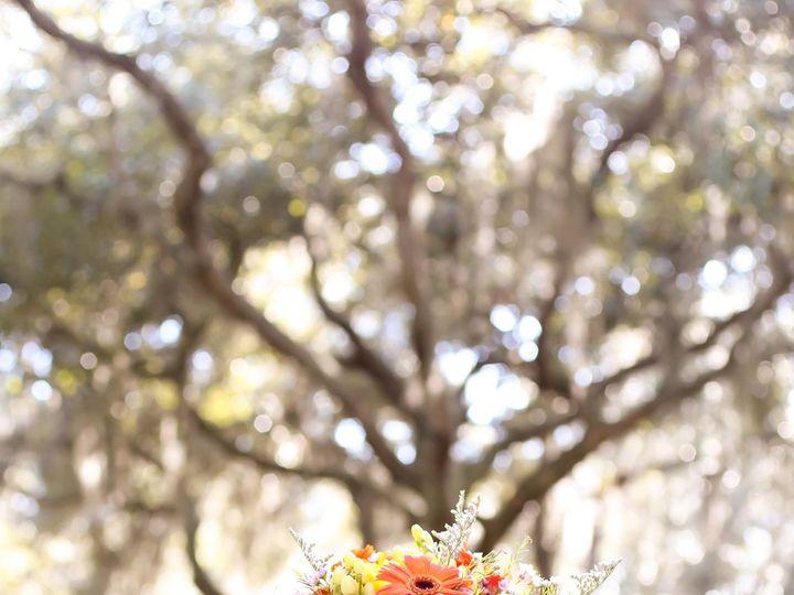 Tmx Lifelongstudios0006 51 516757 Land O Lakes, FL wedding planner
