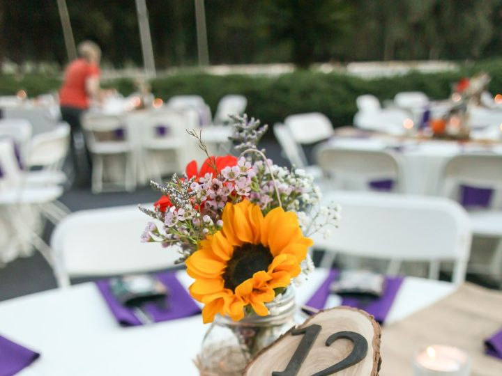 Tmx Lifelongstudios0615 51 516757 Land O Lakes, FL wedding planner