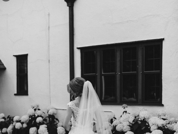 Tmx Img 2730 51 1298757 159897278231585 Howell, MI wedding dress