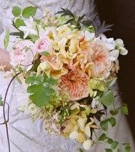 Tmx 1366654933807 English Garden Rose Unstructured Boquet Saint Louis, MO wedding florist
