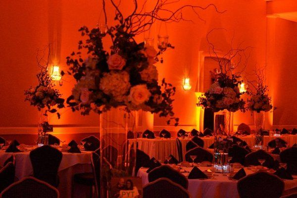 Tmx 1332354326305 Zvanyaroom2 Berlin wedding rental