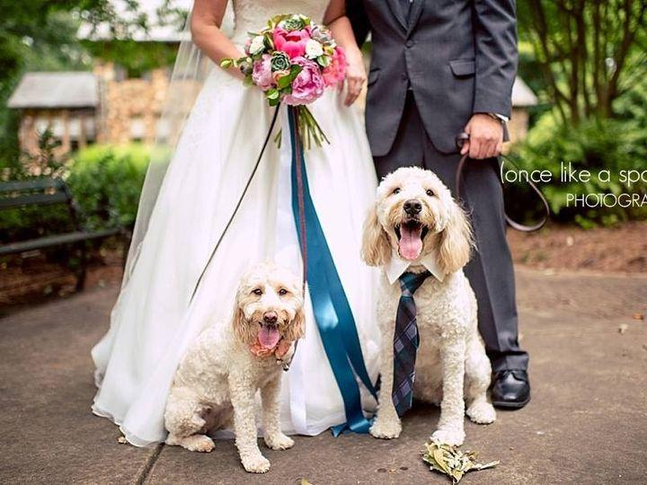 Tmx 1474598017995 Weddingwire24 Washington, DC wedding photography