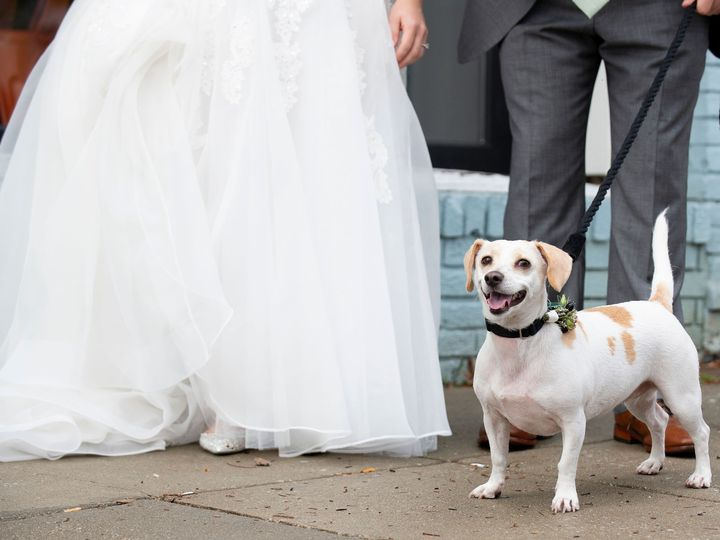 Tmx 2019kane 00326 51 190957 158083517034185 Baltimore, MD wedding planner