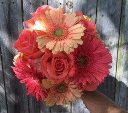 Tmx 1467139925613 Peachy Coral Gerbs Rockwall, Texas wedding florist
