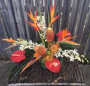 Tmx 1467140690424 Tropical Beauty Rockwall, Texas wedding florist